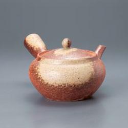 Shigaraki Kyusu Tea Pot