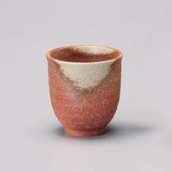 Shigaraki Japanese Tea Set